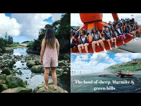 The land of sheep, Marmite and green hills || NEW ZEALAND VLOG