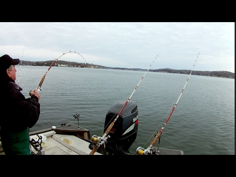 Catfishing on Lake of the Ozarks #9 (2-4-17)