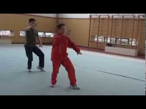 Tai Chi Training Ph.D Program in Shanghai Sport University 4 - Jesse Tsao