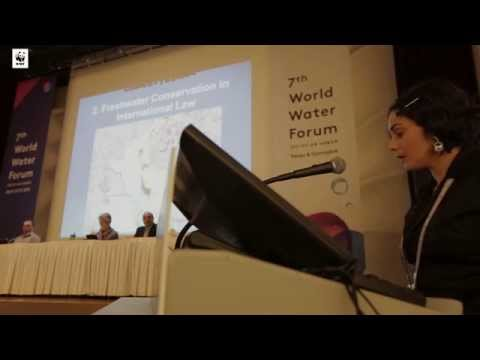 WWF Living Amazon World Water Forum - Flavia Loures Speech - Apr 2015