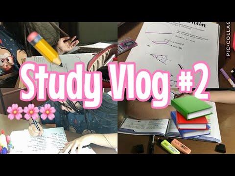 STUDY VLOG #2: uma sexta-feira de estudo|Lauraa Menezes