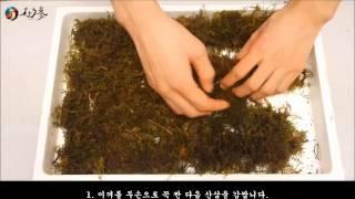 산양산삼 보관 하는 법 - http://i333.kr