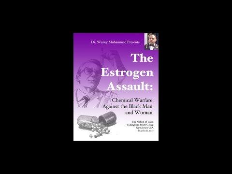 The Estrogen Assault (Excerpt)