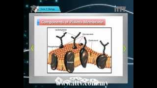iTTV SPM Form 4 Biology Chapter 3 Movement of Substances Across the Plasma Membrane Part 1 - Tips