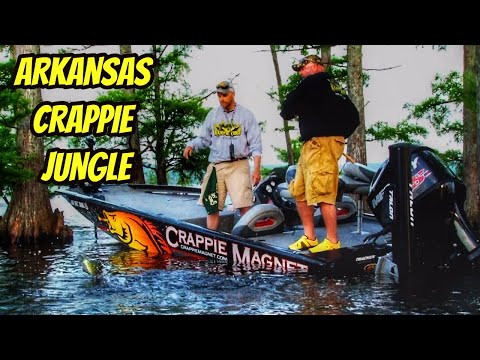 Lake Conway Cypress Tree Crappie- Full Length Eps