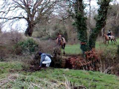 Brosna Foxhounds Fox Hunting In Daingean Part 2 Youtube