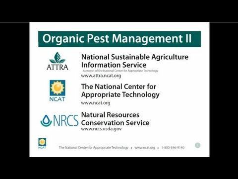 Pest Management for Organic Production Systems II