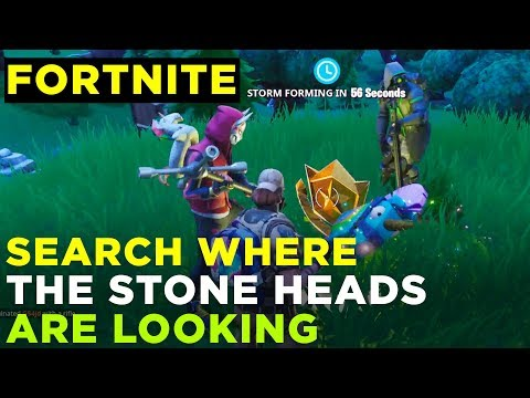 Search Where The Stone Heads Are Looking - Fortnite Challenge Location Guide