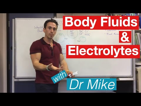 Body Fluids And Electrolytes