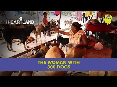 The Lady With 300 Dogs In New Delhi | Unique Stories from India