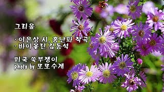 그리움/이은상 시, 홍난파 작곡/바이올린 김동석 & photo by 모모수계