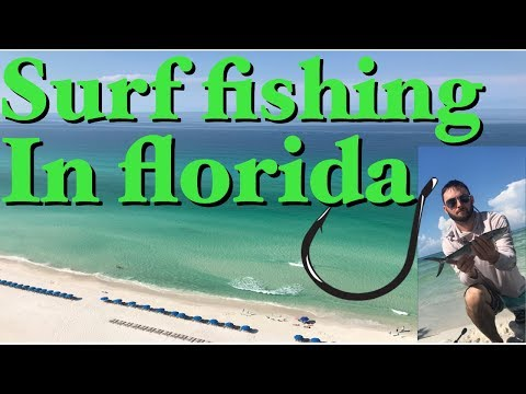 Surf Fishing In Panama City Beach