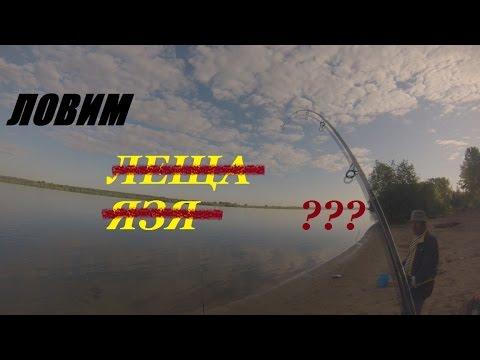 рыбалка на оби с закидушками