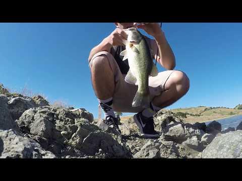 Calero Reservoir Post Spawn Bass Fishing