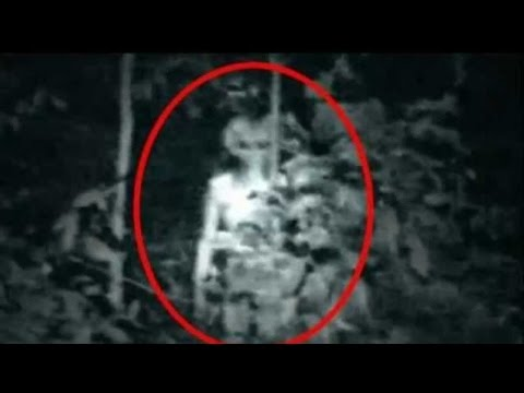 Alien Videos | Silly Theories That Tried To Prove Aliens Exist | Alien Planet | Real UFO Videos
