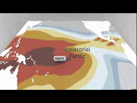 CBC on Pacific Warming, November 2014