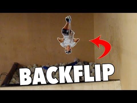 BACKFLIP EN TROTTINETTE OU PAS !?