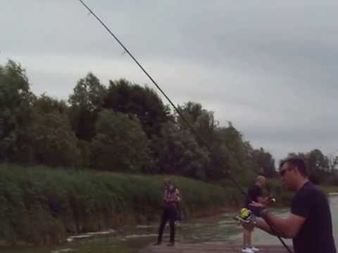 shimano casting day 2014