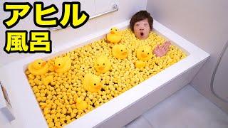 お風呂をアヒルだらけにしてみた! thumbnail