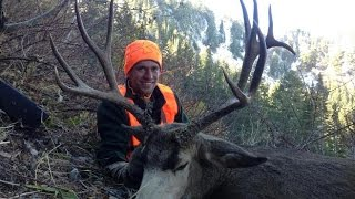 Mule Deer hunting Utah Public Land - Stuck N the Rut 40