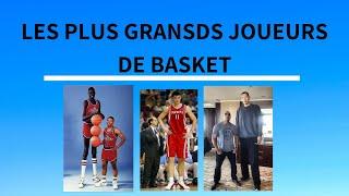 Top 10 - Les plus grands joueurs de Basket ( + 2m25 ) 2015