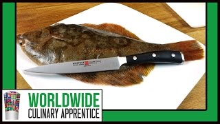 Filleting a Sole - How to Fillet a Flounder/Fluke - Butchering a Flounder - Sole - Cooking Classes