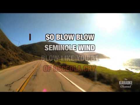 Seminole Wind in the style of John Anderson | Karaoke with Lyrics