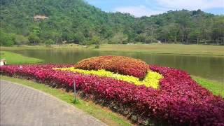 Seethawaka Wet Zone Botanic Gardens sri lanka