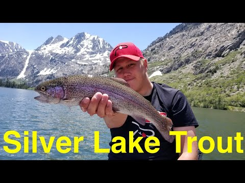 Trout Fishing The Eastern Sierra's Silver Lake
