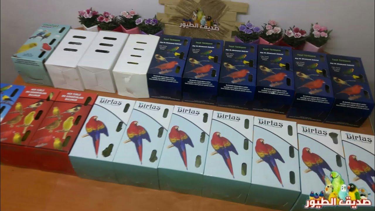 واخيراً أشترينا 10 أزواج طيور للتربية الجماعية