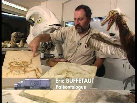 Download Youtube: CPS - Sur les traces des dinosaures
