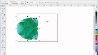 Feather,Tutorial Corel Draw, Tips and Trick, Mastering Corel Draw