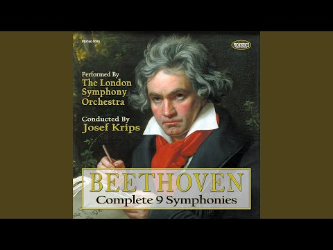 Symphony No 9 D Minor Op 125 Choral Ii Molto Vivace Josef