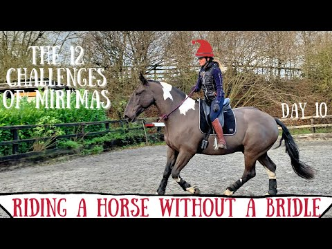 🎄RIDING A HORSE WITHOUT A BRIDLE FOR THE FIRST TIME | MIRI'MAS DAY 10🎄
