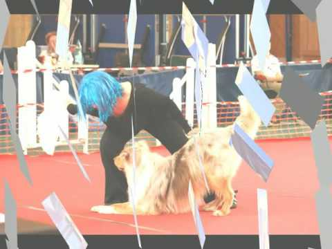 Concours Dog Dancing Chaumes 12/06/2016