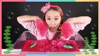 凱利和小凱利娃娃的 Jelly baff fish 啫喱果凍變水玩具遊戲    凱利和玩具朋友們   CarrieAndToys