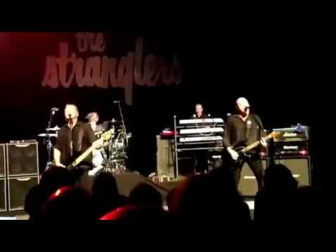 The stranglers - Seignosse- 20151109
