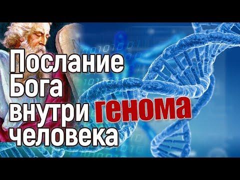 Сенсация: Бог оставил послание внутри генома человека! - Познавательные и прикольные видеоролики