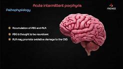 Acute Intermittent Porphyria - Usmle step 1 Biochemistry webinar lecture