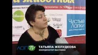 """""""ЛапTV"""" -  """"Выставка ЗООТЕРРА""""."""