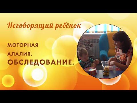 Обследование неговорящего ребёнка 3-х лет.