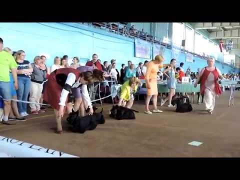 Лето Беларуси 2016/ Summer of Belarus 2016