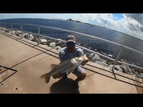 Snook, Trout And Red Drum At Ponce Inlet