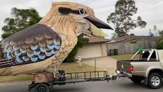 Giant Kookaburra!!!