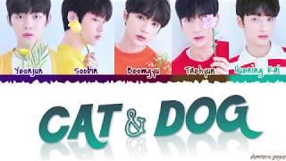 Gambar cover TXT - 'CAT & DOG' Lyrics [Color Coded_Han_Rom_Eng]