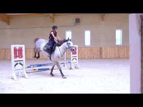 Galiny Palace - Rides - In The Saddle