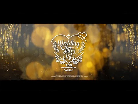 Wedding Les Kit 100 After Effects Project Files Ae Templates