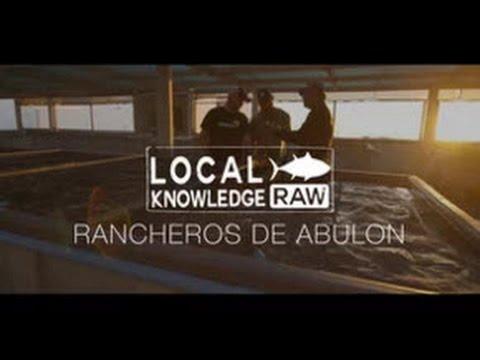 Local knowledge fishing show raw rancheros de abulon youtube for Local knowledge fishing