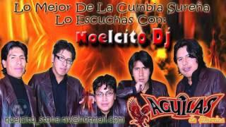 Grupo   Aguilas De America   Que Pena Me Das ♪♫♪Primicia 2012♪♫♪   YouTube 720p