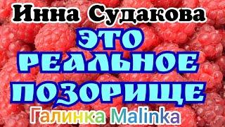Инна Судакова /Это реальное позорище /Обзор Влогов /